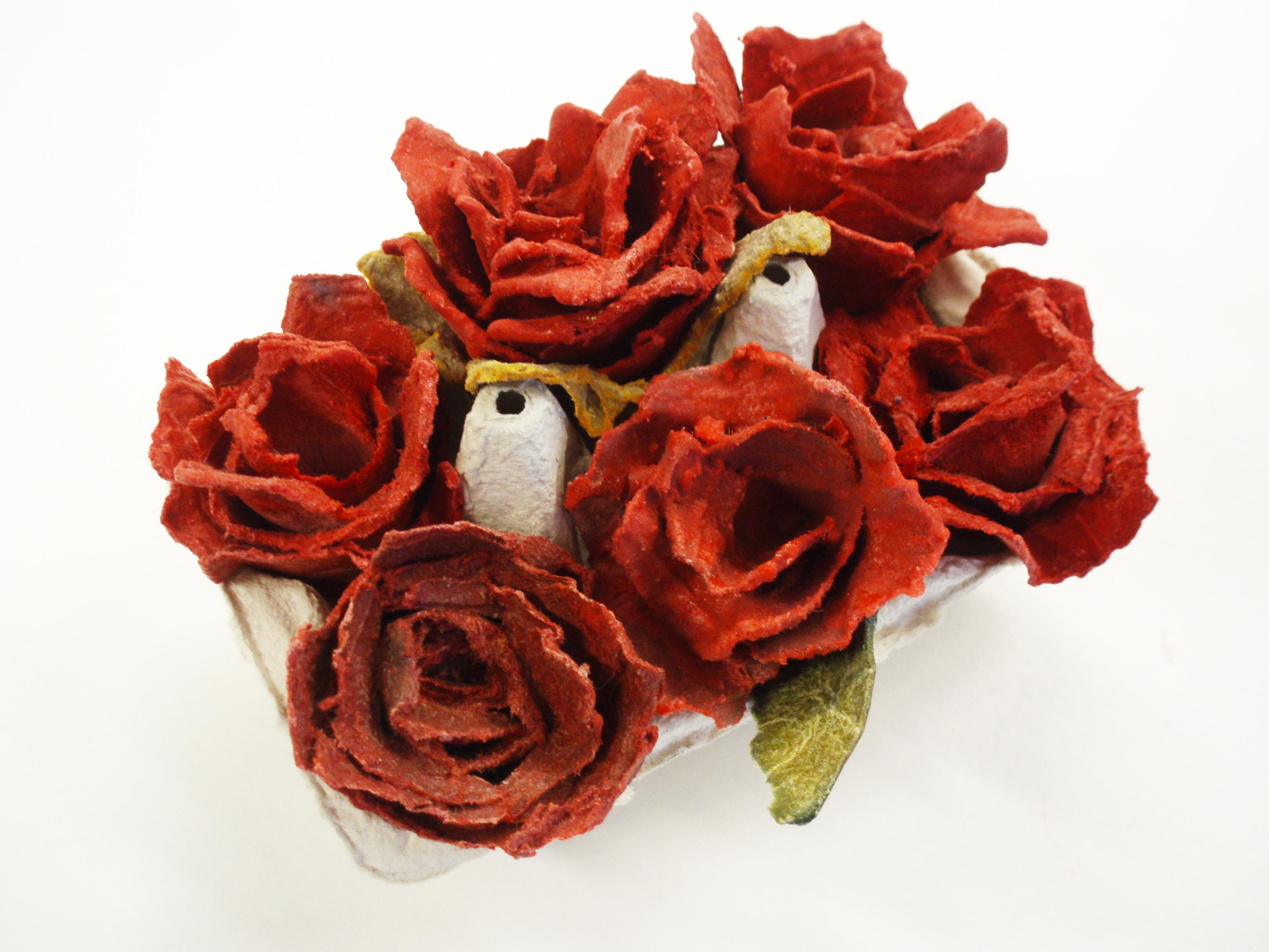 ruusut kennossa